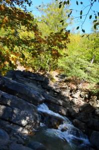 Cascada Nasolea Mare Darmanesti
