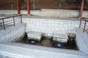 Izvoarele de apă minerală din Tg. Ocna