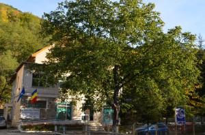 Sanatoriul Balnear Slanic Moldova