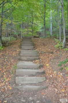Traseu 300 de scari02